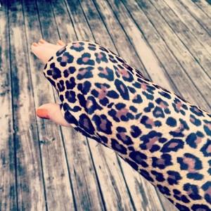 Classic Cheetah Alison Gary